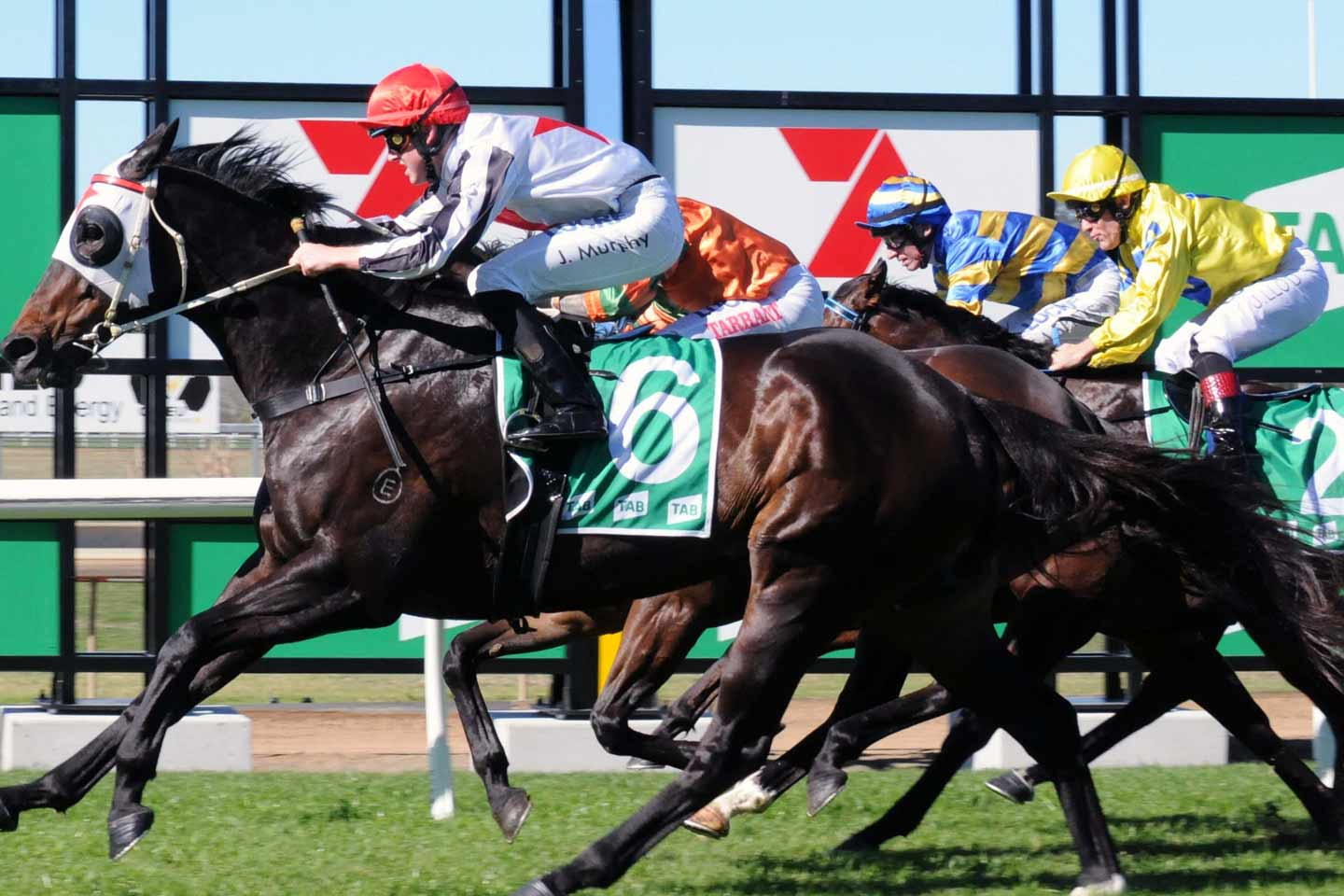 Racing at Ipswich Turf Club
